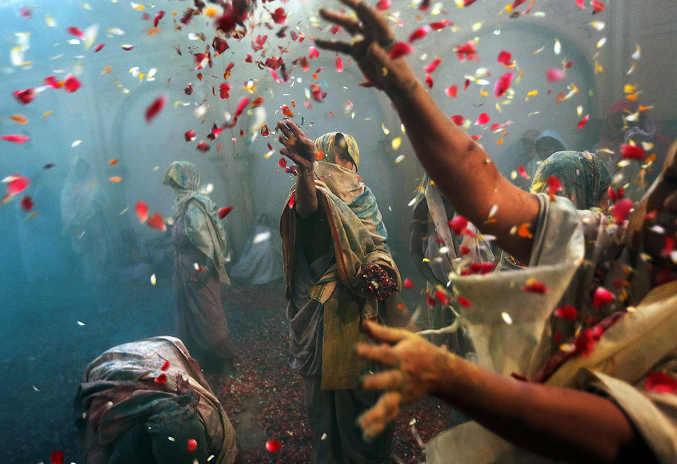 Holi celebrations: Widows